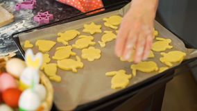 Γυναίκα που βάζει τα μπισκότα Πάσχας σε έναν δίσκο ψησίματος απόθεμα βίντεο