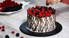 Γυναίκα που διακοσμεί το εύγευστο κέικ με τα μούρα φιλμ μικρού μήκους