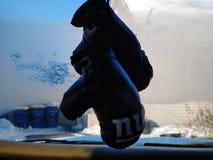 Εγκιβωτίζοντας γάντια γιγάντων της Νέας Υόρκης στοκ εικόνα με δικαίωμα ελεύθερης χρήσης