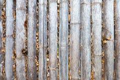 Εκλεκτής ποιότητας φράκτης μπαμπού στοκ εικόνες με δικαίωμα ελεύθερης χρήσης