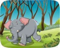 Ελέφαντας που τρέχει στο δάσος ελεύθερη απεικόνιση δικαιώματος