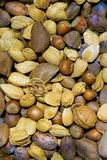 Εναέρια άποψη των καρυδιών στα κοχύλια στοκ εικόνα με δικαίωμα ελεύθερης χρήσης