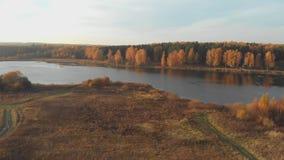 Εναέρια τοπ άποψη: πέταγμα πέρα από το όμορφες φωτεινές δάσος και τη λίμνη φθινοπώρου την ηλιόλουστη ημέρα απόθεμα βίντεο