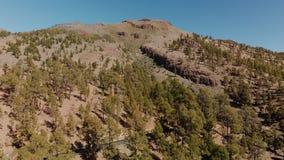 Εναέριος πυροβολισμός Δρόμος βουνών στο άγριο πράσινο δάσος στο βουνό Κάμερα απογείωσης Ισπανία, Κανάρια νησιά, Tenerife απόθεμα βίντεο