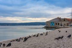 Εν τω μεταξύ στη θάλασσα της Κροατίας Kastel Novi Adratic στοκ εικόνα με δικαίωμα ελεύθερης χρήσης