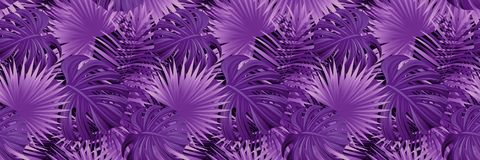 εξωτικός τροπικός ανασκό&pi τροπικό διανυσματικό έμβλημα απεικόνιση ταπετσαρία με τα φυτά ζουγκλών, φύλλα φοινικών όμορφος διανυσματική απεικόνιση
