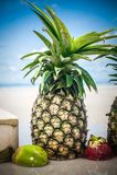 Εξωτικός τροπικός φρέσκος ανανάς Αντανάκλαση νερού στην παραλία στοκ φωτογραφία
