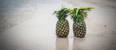 Εξωτικός τροπικός φρέσκος ανανάς Αντανάκλαση νερού στην παραλία στοκ φωτογραφίες