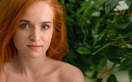 Εύθυμη redhead γυναίκα με τις φακίδες που γελά στη κάμερα στοκ εικόνες