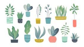 Επίπεδα houseplants Εσωτερικές εγκαταστάσεις κήπων doodle, χαριτωμένες εσωτερικές succulents και εγκαταστάσεις σπιτιών Συρμένος χ απεικόνιση αποθεμάτων