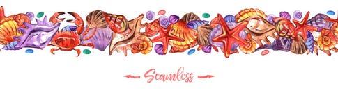 Επιγραφές θαλασσινών κοχυλιών στο ύφος watercolor στο άσπρο υπόβαθρο Θερινή άνευ ραφής απεικόνιση πρότυπο τροπικό διανυσματική απεικόνιση
