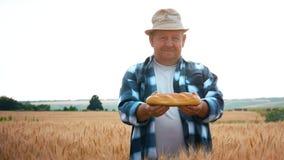 Επιτυχής αγρότης στον τομέα του σίτου Ένα ενήλικο άτομο καταδεικνύει ένα προϊόν φιαγμένο από σίτο, ψωμί Χρόνος συγκομιδών έννοιας φιλμ μικρού μήκους