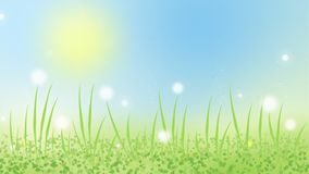 Ζωτικότητα κινούμενων σχεδίων της λιβελλούλης στο θερινό λιβάδι με την πράσινη χλόη ελεύθερη απεικόνιση δικαιώματος