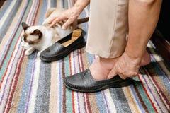Ηλικιωμένη γυναίκα που πρήζεται πόδια που βάζουν στα παπούτσια στοκ εικόνες