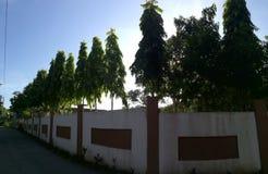ηλιοφάνεια καλημέρας στοκ φωτογραφία με δικαίωμα ελεύθερης χρήσης