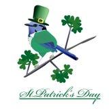 Ημέρα του ST Patrick_s πουλιών ελεύθερη απεικόνιση δικαιώματος