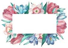 Η άνοιξη ανθίζει το πλαίσιο στο ύφος watercolor με το άσπρο υπόβαθρο Υάκινθος, τουλίπα, νάρκισσοι ελεύθερη απεικόνιση δικαιώματος