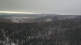 Η απέραντη από την Αλάσκα αγριότητα απόθεμα βίντεο