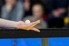 Η εξυπηρέτηση επιτραπέζιων τενιστών, κλείνει επάνω Μεμονωμένος αθλητισμός στοκ εικόνες
