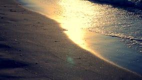 Η ηλιόλουστη πορεία ακτινοβολεί στην υγρή άμμο στην ακτή φιλμ μικρού μήκους