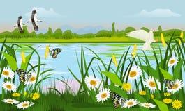 Η θέση του έλους με τα δέντρα χλόης, η πεταλούδα λουλουδιών και τα πουλιά πετούν διανυσματική απεικόνιση