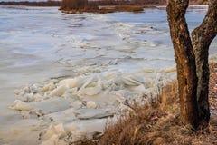 Η κάθοδος του πάγου την άνοιξη στον ποταμό είναι το Μάρτιο ένα φυσικό φαινόμενο ενάντια στον ουρανό και καλύπτει το βράδυ στοκ εικόνα
