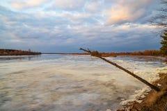 Η κάθοδος του πάγου την άνοιξη στον ποταμό είναι το Μάρτιο ένα φυσικό φαινόμενο ενάντια στον ουρανό και καλύπτει το βράδυ στοκ εικόνα με δικαίωμα ελεύθερης χρήσης