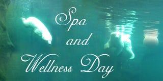 Η κάρτα με δύο έξυπνες πολικές αρκούδες κολυμπά με μια σφαίρα υποβρύχια τα τυρκουάζ νερά ελεύθερη απεικόνιση δικαιώματος