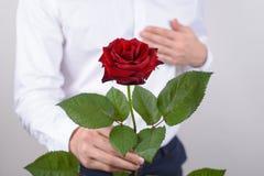Η καλλιεργημένη φωτογραφία κινηματογραφήσεων σε πρώτο πλάνο του όμορφου εύθυμου συζύγου που κρατά το όμορφο συναρπαστικό λουλούδι στοκ φωτογραφία