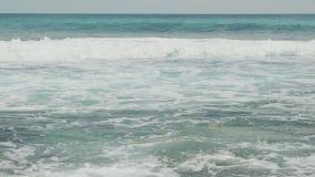 Η λεπτή άμμος της παραλίας Dreamland πλένεται από τα foamy κύματα του κυανού βίντεο Ινδικού Ωκεανού Σεϋχέλλες 4k απόθεμα βίντεο