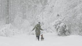 Η νέα όμορφη καυκάσια γυναίκα κοριτσιών έντυσε στο παιχνίδι σακακιών με το κουτάβι του μικτού σκυλιού φυλής στο χειμερινό δάσος σ φιλμ μικρού μήκους