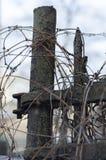 Η ξηρά άμπελος κάλυψε έναν φράκτη μετάλλων στοκ εικόνες με δικαίωμα ελεύθερης χρήσης