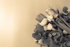 Η όμορφη ανθοδέσμη των τουλιπών και θαμνώδης λίγος κίτρινος αυξήθηκε στο ρόδινο υπόβαθρο, βάλτε οριζόντια με το διάστημα αντιγράφ στοκ φωτογραφία