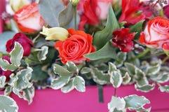 Η όμορφη floral ρύθμιση του κοκκίνου, του ροζ και burgundy ανθίζει σε ένα ρόδινο ξύλινο κιβώτιο στοκ φωτογραφία