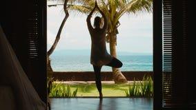 Η σκιαγραφία της γυναίκας ασκεί την περισυλλογή γιόγκας στη θέση δέντρων, τεντώνει τα χέρια επάνω στην παραλία, όμορφη άποψη, ήχο απόθεμα βίντεο