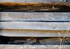Η σύσταση του παλαιού ξύλινου φράκτη στοκ εικόνες
