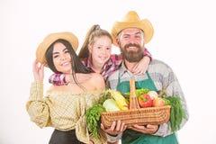 Η συγκομιδή λαχανικών κηπουρών οικογενειακών αγροτών απομόνωσε το άσπρο υπόβαθρο Οικογενειακοί αγροτικοί αγρότες υπερήφανοι της σ στοκ φωτογραφίες