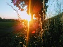 Η φύση φορά πάντα τα χρώματα του πνεύματος στοκ φωτογραφία