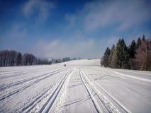 Η φυσική άποψη σχετικά με τέλεια σκανδιναβική να κάνει σκι σύρει κοντά στο NA Morave Nove Mesto στοκ φωτογραφία με δικαίωμα ελεύθερης χρήσης