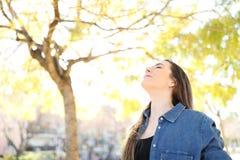 Η χαλαρωμένη γυναίκα αναπνέει το καθαρό αέρα σε ένα πάρκο στοκ φωτογραφία με δικαίωμα ελεύθερης χρήσης