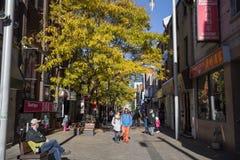 Η rue de la Gauchetiere Street, σε Chinatown, συσσώρευσε με τους αγοραστές στοκ φωτογραφίες με δικαίωμα ελεύθερης χρήσης