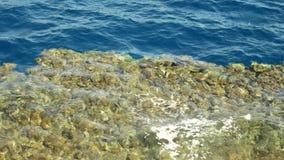 Θάλασσα ή ωκεανός νερού στην παραλία με τις πετρώνως πέτρες κοραλλιών απόθεμα βίντεο