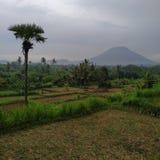 Θέα βουνού και αγροτική κοιλάδα στοκ εικόνα