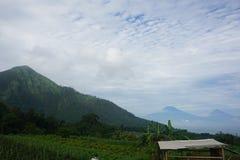 θέες βουνού και κήποι ντοματών στοκ φωτογραφία