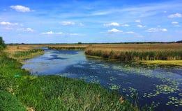 Θερινό τοπίο, τομείς ποταμών και λιβάδια, Πολωνία στοκ εικόνες