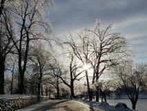 Θύελλα πάγου στη Νέα Αγγλία στοκ φωτογραφίες