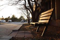 Κάθισμα πάγκων στον ήλιο πρωινού στοκ εικόνες με δικαίωμα ελεύθερης χρήσης