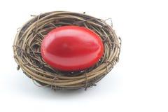 Κίνδυνος που επιδεικνύεται στο κόκκινο αυγό φωλιών στο οριζόντιο άσπρο υπόβαθρο στοκ φωτογραφίες με δικαίωμα ελεύθερης χρήσης