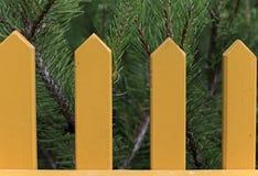 Κίτρινοι στύλοι ενός φράκτη και conifere των βελόνων κήπων ως υπόβαθρο στοκ φωτογραφίες με δικαίωμα ελεύθερης χρήσης