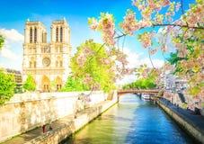 Καθεδρικός ναός της Νοτρ Νταμ, Παρίσι Γαλλία στοκ φωτογραφία